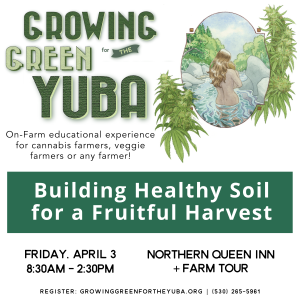 Building Healthy Soil for a Fruitful Harvest