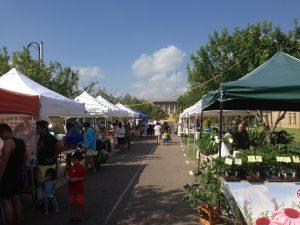 Brownsville Farmers Market