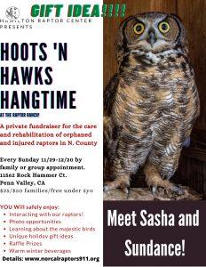 Hoots n' Hawks Handtime